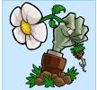植物大战僵尸雨版32.7