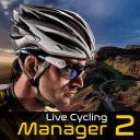真实自行车队经理2破解版