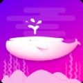 触娱app