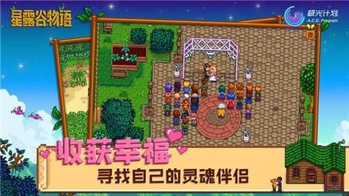 星露谷物语手机中文版