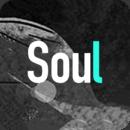 soul无限匹配版